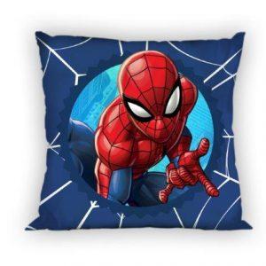 spider044